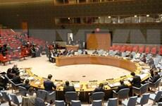 Vietnam expresa preocupación en ONU por escalada del conflicto en Franja de Gaza