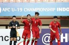 Australia evalúa altamente a la selección de fútbol sub-19 de Vietnam