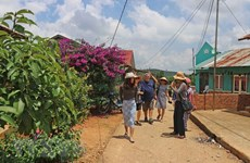 Agroturismo, nuevo estilo de turismo en la provincia vietnamita de Lam Dong