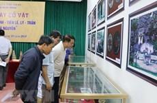 Exhiben artefactos de la cultura Dong Son y dinastías feudales de Vietnam en provincia de Ninh Binh