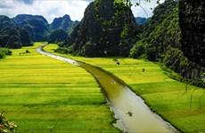 Turoperadores promueven desarrollo del turismo de provincia norvietnamita de Ninh Binh