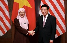 Vietnam y Malasia abogan por una asociación estratégica más fuerte
