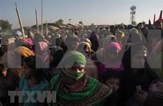 Myanmar y Bangladesh comenzarán repatriación de rohingyas en noviembre
