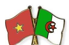 Dirigentes de Vietnam felicitan a Argelia por 64 aniversario del Día de la Revolución