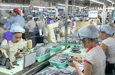 Aumentan número de nuevas empresas en Vietnam en lo que va de año