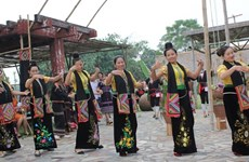 Actividades culturales de grupos étnicos resaltarán la gran unidad de Vietnam