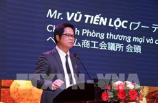 Delta del Río Mekong de Vietnam llama a inversión japonesa