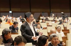 Comité Permanente del Parlamento vietnamita apoya prolongación de concesión de e-visados a foráneos