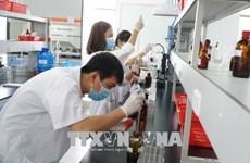 Empleadores vietnamitas intensificarán reclutamiento de trabajadores en 2019, según encuesta