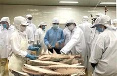 Parlamento Europeo aprecia esfuerzos de Vietnam contra la pesca ilegal
