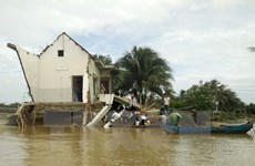 Exhortan al gobierno de Vietnam a adoptar medidas en respuesta al cambio climático
