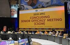 Vietnam participa en reunión de altos funcionarios de APEC en Papúa Nueva Guinea