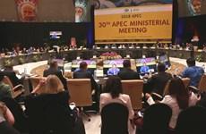 Premier de Vietnam participará en la Cumbre de APEC en Papúa Nueva Guinea