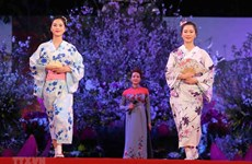 Espacio cultural contribuye a promover lazos entre Vietnam y Japón