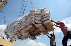 Impresionante volumen de exportación de arroz de Vietnam a Indonesia