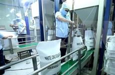Países Bajos impulsa intercambio de experiencias con Vietnam sobre higiene alimentaria