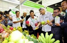 Malasia busca modernizar agricultura