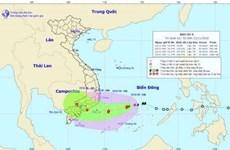 Tifón Usagi se dirige a la región sureña del Centro de Vietnam
