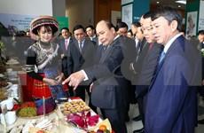 Premier pide a provincia norvietnamita de Cao Bang priorizar el desarrollo socioeconómico local