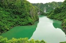 Vietnam promueve conservación de valores de sus reservas mundiales de biosfera
