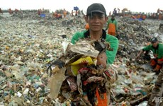 Indonesia trabaja para eliminar toneladas de basura en archipiélago Mil Islas
