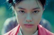 Película vietnamita recibe premio en Festival cinematográfico internacional de El Cairo