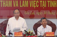 Premier vietnamita insta a provincia altiplana de Gia Lai aumentar la cobertura forestal