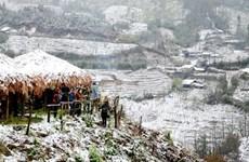Se esperan miles de visitantes al Festival de invierno Sa Pa, en desarrollo en Vietnam