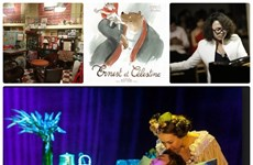 Festival cultural profundiza vínculos Vietnam-Francia