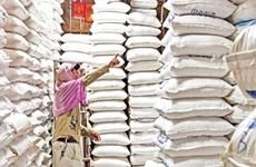 Rebajan las exportaciones arroceras de Camboya
