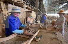 Autoridades vietnamitas impulsan cumplimiento de planes sobre explotación forestal