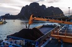 Grupo mineral vietnamita busca aumentar ingreso en 2019