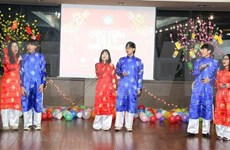 Vietnamitas en República Checa y Corea del Sur saludan al año 2019