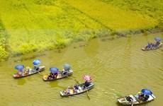 Crece número de turistas a provincia vietnamita de Ninh Binh