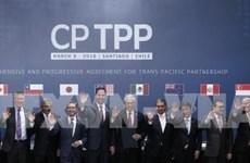 CPTPP brindará enormes oportunidades para empresas vietnamitas
