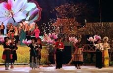 Celebrarán en Vietnam festival de Flor de Bauhinia blanca