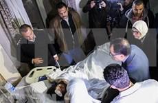 Regresarán al país últimos turistas vietnamitas víctimas del atentado en Egipto