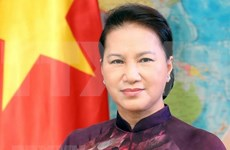 Presidenta de Asamblea Nacional destaca resultados parlamentarios en 2018
