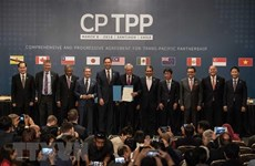 CPTPP entrará en vigor en Vietnam desde 14 próximo
