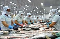Vietnam, mayor exportador mundial del pescado Tra
