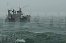 Pide Vietnam ayuda a países vecinos en la búsqueda de pescadores desaparecidos