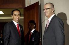 Promete Indonesia impulsar los derechos de los palestinos en Consejo de Seguridad de ONU