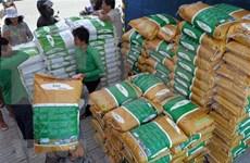 Propone la UE tarifas proteccionistas sobre arroz importado de Cambodia y Myanmar