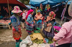 Contribuye festival del brocado a preservación del legado cultural de etnias minoritarias vietnamitas