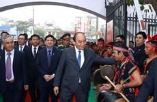 Ginseng Ngoc Linh debe marcar un hito en la industria farmacéutica de Vietnam, expresó Premier