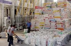 Suministrarán arroz a cinco provincias vietnamitas en ocasión del Año Nuevo Lunar