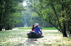 Crece en Vietnam demanda turística en ocasión del Año Nuevo Lunar