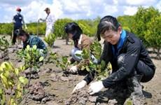 Destinarán fondo millonario a proyectos de emprendedores verdes