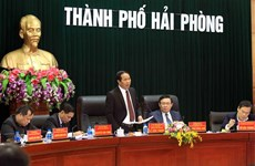 Ciudad vietnamita busca elevar eficiencia del uso de inversiones extranjeras