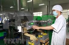Industria de bebidas y procesamiento alimentario de Vietnam sigue tendencia alcista